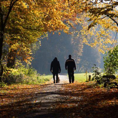 is-afvallen-door-wandelen-je-wens-3-gouden-tips